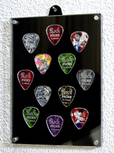 Guitar Pick Case for 12 Picks
